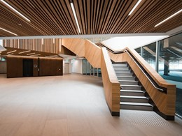 Acoustic panelling at Wanneroo Civic Centre achieved with custom DecorSlat timber slats