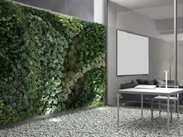 Reducing and relieving stress – the green wall way