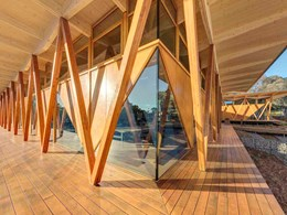 MASSLAM gets prominence on Arup's timber buildings document
