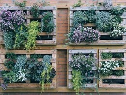 5 reasons to install an artificial green wall