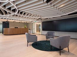 From ceiling fixture to design feature: Frontier Fins and Raft acoustic system from Autex