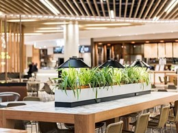 Bench lamps customised for food court at Melbourne's Chadstone Shopping Centre