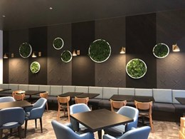Prefabricated wall discs add instant splash of green to restaurant
