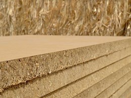 Durable, trafficable building panels made from wheat straw