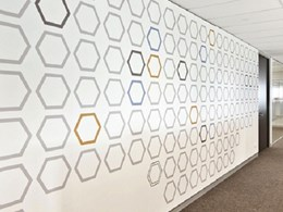 Mural at Melbourne office created with EchoPanel custom printed wall panels