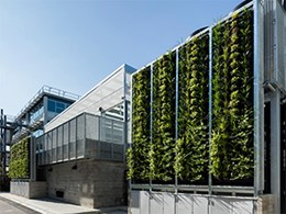 Monash uni's living wall installations aid its research into greener public spaces