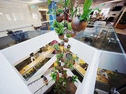 Tensile suspends pots with plants from a high ceiling in Sydney hanging garden project