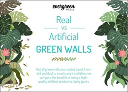Infographic – real vs artificial green walls