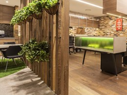 Designing healthier, natural interiors with timber