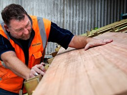 Fully Certified: Tasmanian Timber leads the world