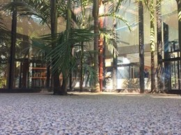 Affordable hardscaping solutions for commercial facilities