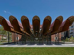 Linear skylights double as roof gutters at Sydney's Green Square precinct