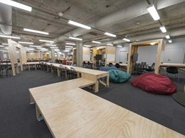 Radiata structural plywood becomes MUSE for Macquarie Uni library refurbishment