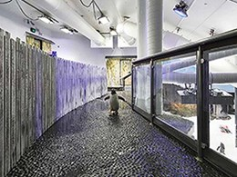 Penguin enclosures at Sydney's Sea Life Aquarium built with HDPE panels