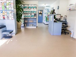 25-year-old Altro safety floor still going strong at Melbourne vet clinic