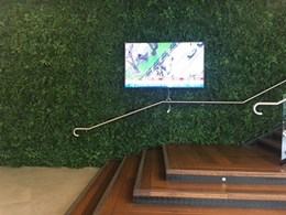 Adding greenery to the foyer at Pyrmont office tower