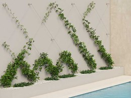 Stainless steel systems for green walls