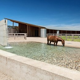 Mornington Peninsula equestrian centre wrapped by earth wall and shaded by expansive zinc roof