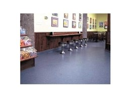 Chroma-Quartz industrial floor coatings from Global Concrete Solutions