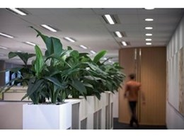 Fatigue, depression, tension, even anger all reduced by indoor greenery – new Australian study examined by Ambius