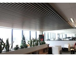 Kingwood composite timber ceiling installed at Adobe, Sydney office