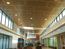Mental Health Hospital lounge made welcoming with a warm timber acoutic ceiling
