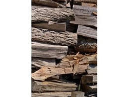 New study confirms suitability of wood as structural building material