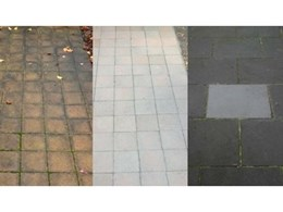Permanent prevention of moss and algae on concrete and natural stone