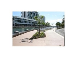 RootCells from Arborgreen Landscape Products nurture young trees and protect pavement on Maroochydore promenade