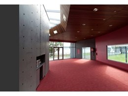 Screenwood Western Red Cedar used as acoustic ceiling panels in school project