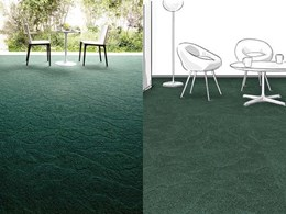 Autex Commercial Carpet Collection By Nolan Group