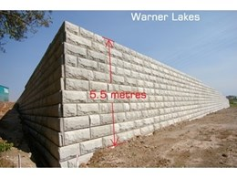 Stone Strong: The Great Wall of Warner