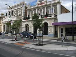 Street trees in Gawler thoroughfare protected by RootCells and Tree Guards