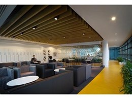 Supawood's Supaslat Maxi beams fit hand in glove with state-of-the-art green corporate fit out