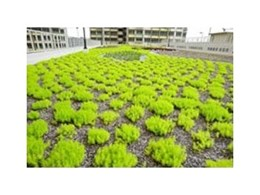 VersiDrain 25P drainage and water retention trays from Green Roof Technologies installed at HDB car park in Singapore