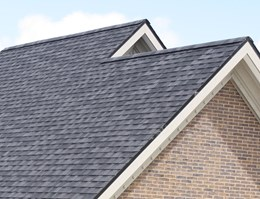 Top 6 Roof Shingles: Asphalt, Timber & More