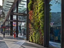 Retailers missing out on profits: WorldGBC report shows green buildings enhance customer experiences