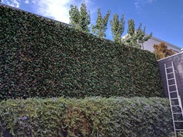 Transforming garden fences with realistic greenery