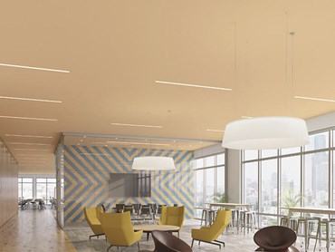USG Boral Ensemble acoustic ceiling panels in office interior