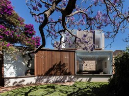 Jac is a Federation-era home extension done for the love of a tree
