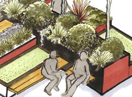 "Public invited to vote on Canberra's pop-up ""micro park"" design"