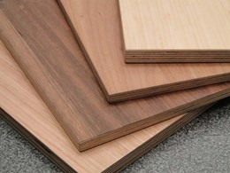 Plywood: From raw timber to spectacular design material