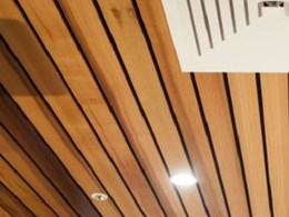 Flat timber profiles from Austratus for feature walls and suspended ceilings