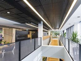 Practical acoustics and dynamic aesthetics with SUPAWOOD ceiling tiles