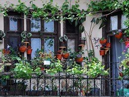 8 tips for creating a lush garden retreat on your balcony