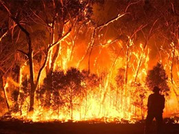 Building industry has lessons to learn from Black Summer bushfires