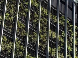 How much does it cost to install a green façade?