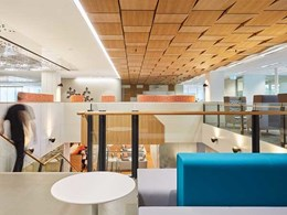 Timber panelled ceiling turns centrepiece in HASSELL-designed Mental Health Commission office