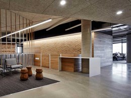 Troldtekt acoustic panels add rustic touch to Port Adelaide government office