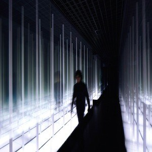 Prism Design Simulates Never Ending Bamboo Forest With